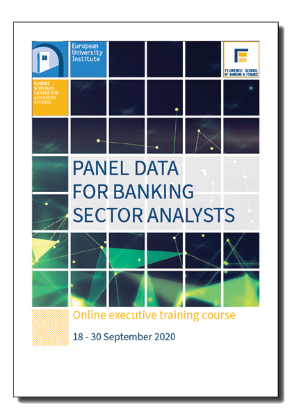 Panel Data for Banking Sector Analysts - Brochure